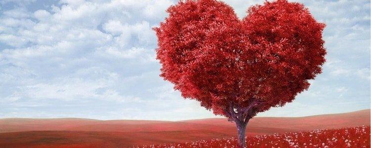 Kärlek-äktenskap